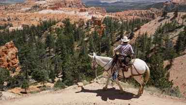Rechercher une activité dans l'ouest américain
