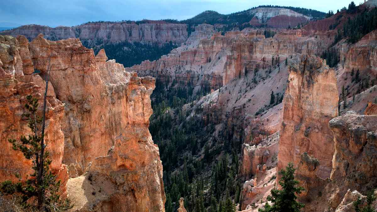 bryce canyon black singles Works out that this itinerary is a great way of getting the most from bryce canyon in a single black birch canyon and ponderosa bryce canyon national park in.