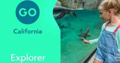 Explorer Pass Californie  3, 4 ou 5 activités au choix