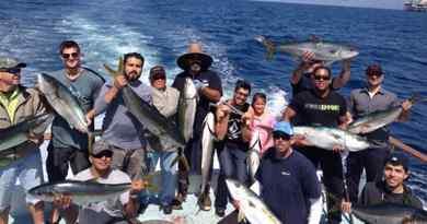 Pêche en haute mer - Au départ de Newport Beach