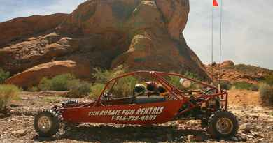 Course-poursuite en buggy dans le désert