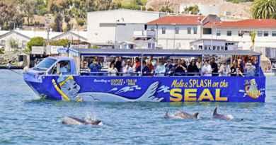 Tour insolite de San Diego en véhicule amphibie