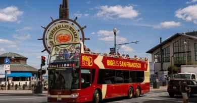 Tour en bus et visites guidées au choix