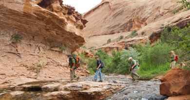 Randonnée-canyoning à la grotte d'Ephedra